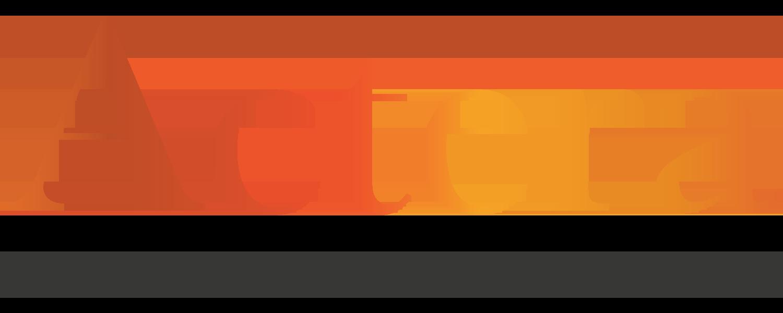 ACTERA INGREDIENTS's Company logo